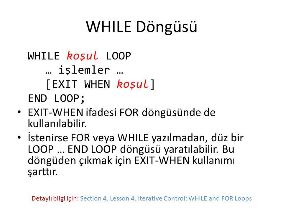 WHILE Döngüsü WHILE koşul LOOP … işlemler … [EXIT WHEN koşul]